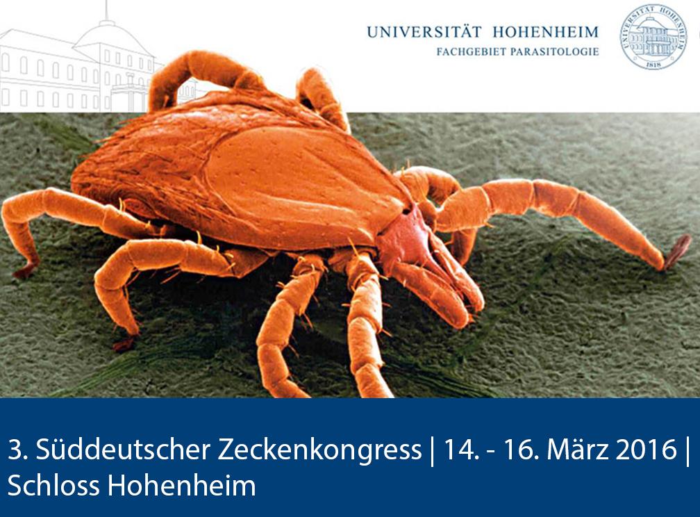 Bis zu 800 Tiere haben die Forscher der Universität Hohenheim in untersuchten Gärten gefunden. | Bildquelle: Universität Hohenheim