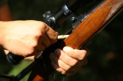 Bundestag und Bundesrat beraten über Waffengesetz